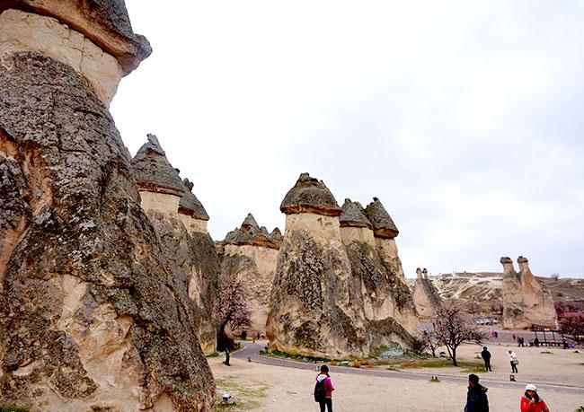 キノコ岩群の景色